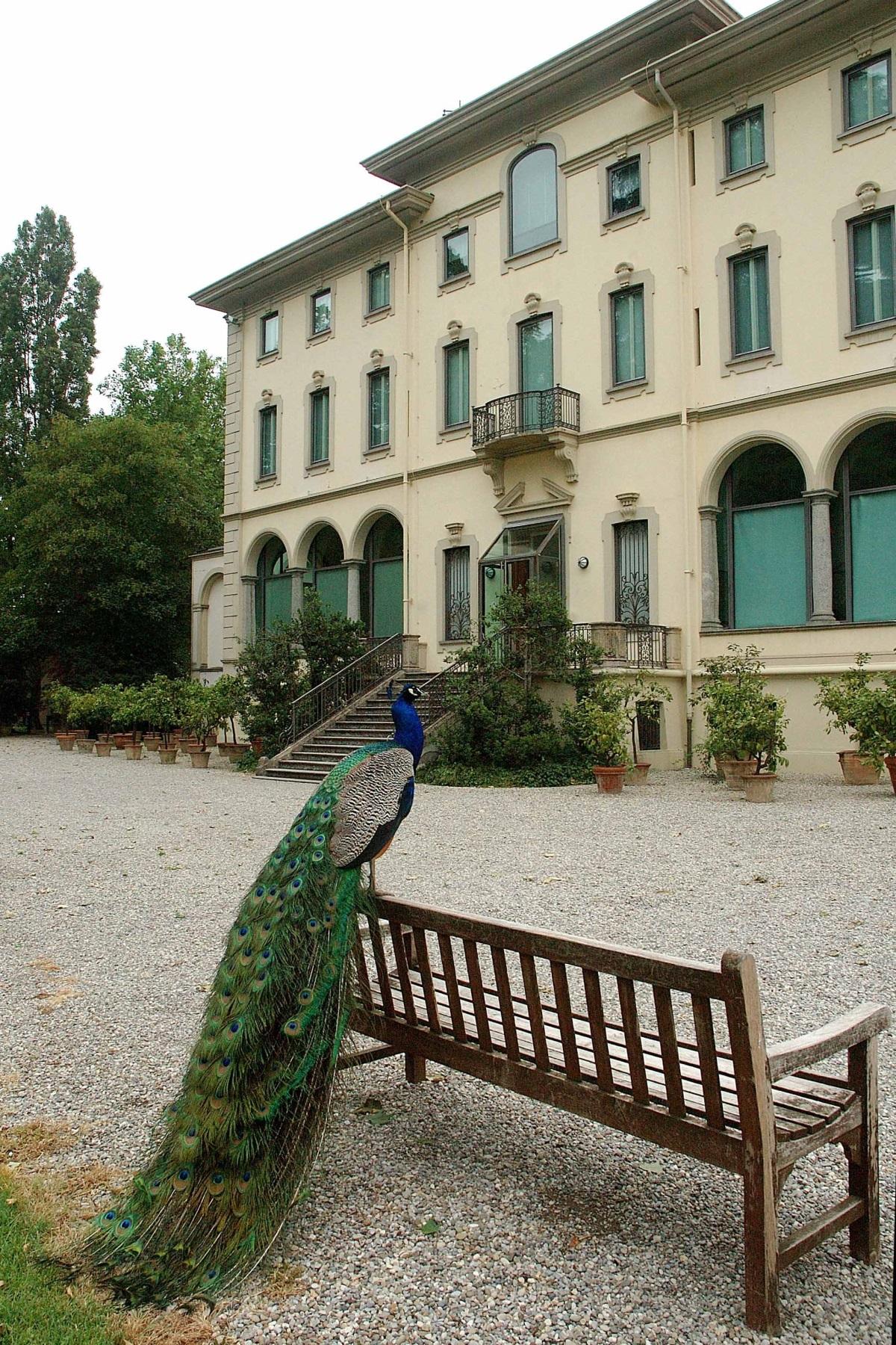 Fondazione Magnani Rocca - La Villa dei Capolavori, MyTemplArt Magazine