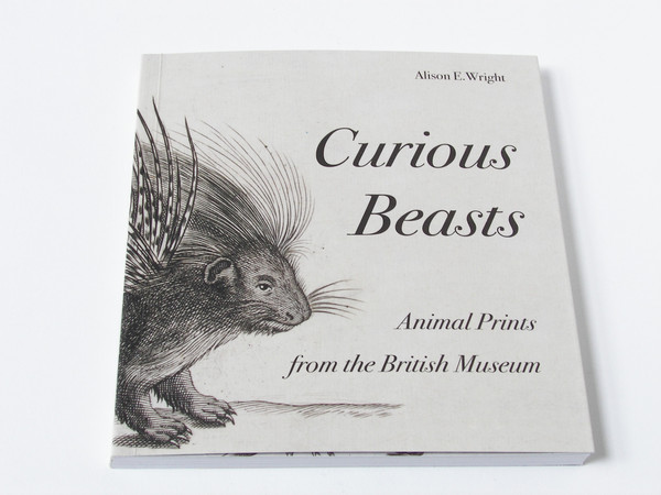 Curious Beasts by Alison E Wright