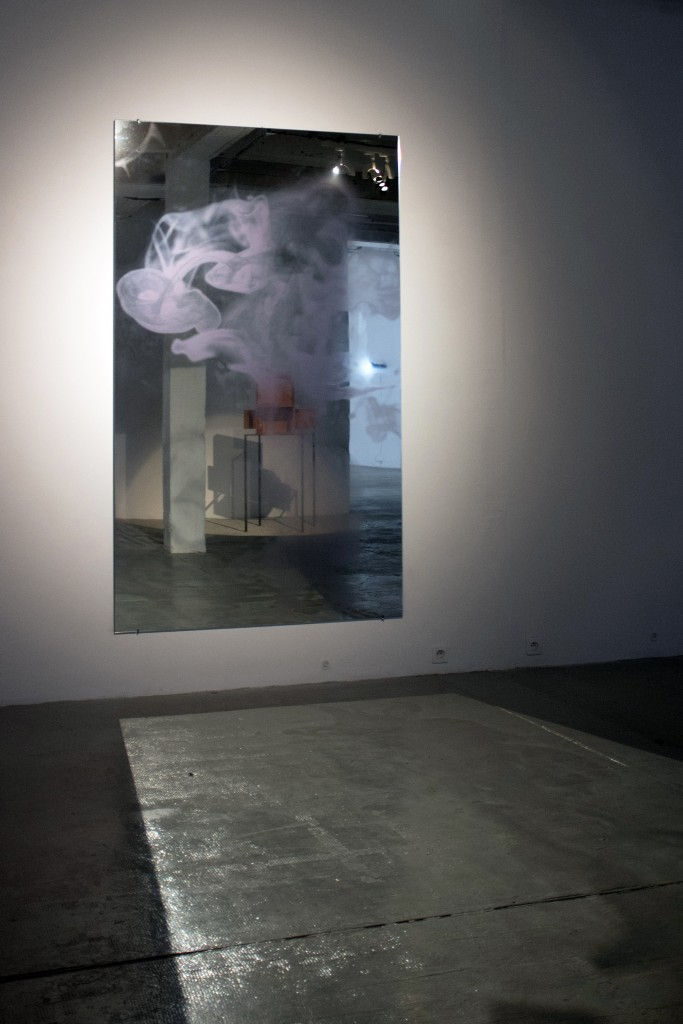 MiArt 2015, Goldschmied & Chiari, Medusa mirrors, 2014, digital print on mirror, 225x135 cm, Courtesy the artists