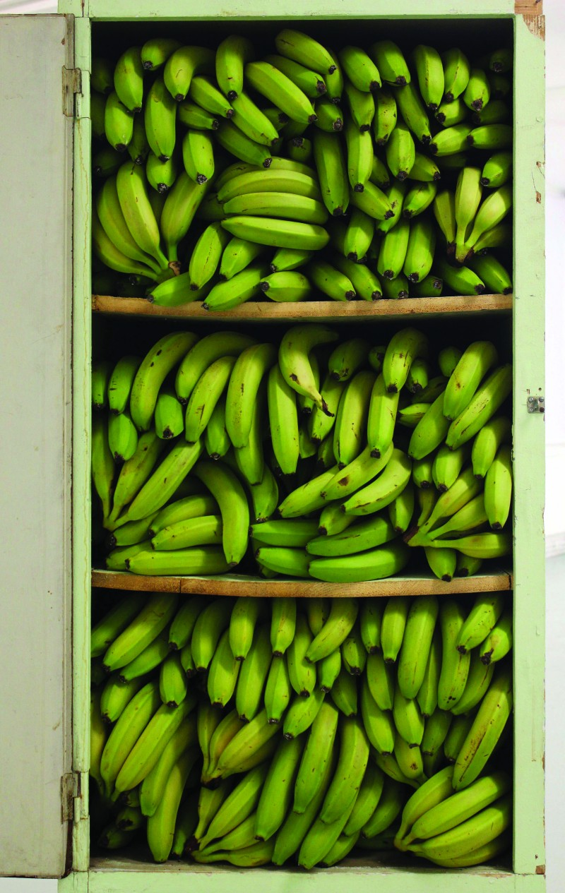 Before 1989 We Kept The Bananas In The Closet, 2014 Found wardrobe, bananas 172x66x58 cm Courtesy the artist and Galerie Antoine Levi, Paris